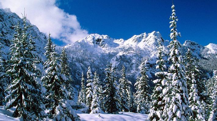 Cómo cuidar nuestra salud durante el invierno